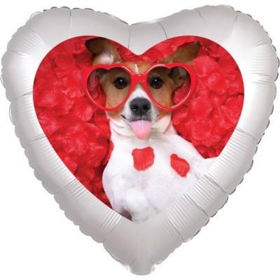 1301-1455-cane-cuore