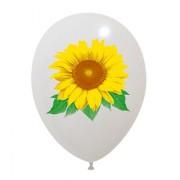 newballoonstore-fiori-girasole